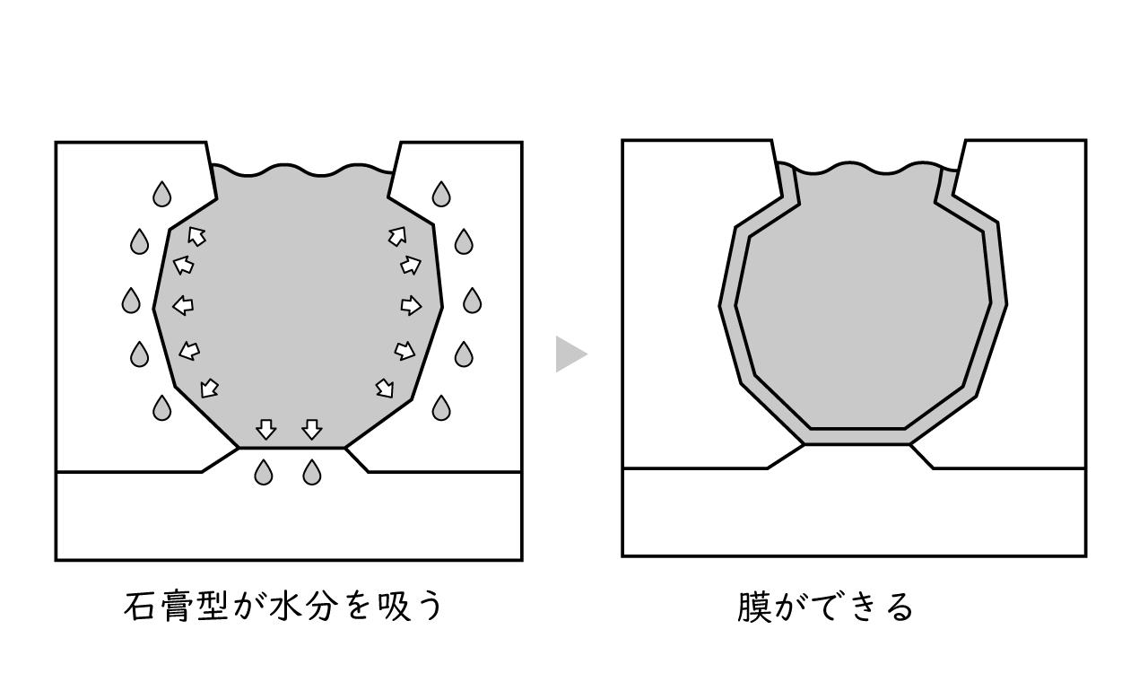 石膏型が水分を吸って膜ができる